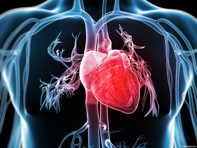 Ketahui Cara Pencegahan Sakit Jantung Di Sini!